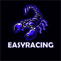 cropped-logo-easyracing-2.jpg